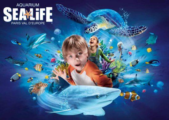 Aquarium-Sealife